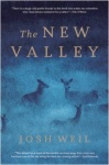 the-new-valley1