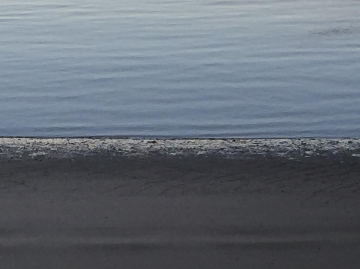 tides: 364/365